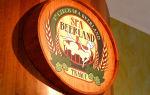 Чешское пиво: особенности, история, виды и лучшие марки