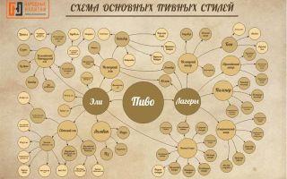 Сорта пива согласно международной классификации