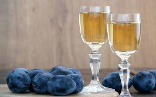 Домашняя настойка из сливы на водке и спирте: лучшие рецепты