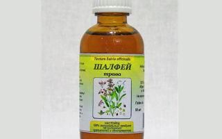Настойка шалфея на водке (спирте) – рецепт и применение