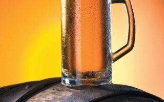 Как выбрать бочку для крепкого алкоголя, вина или пива: советы и секреты от экспертов