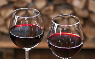 Домашнее вино из сливы: практические советы начинающим виноделам