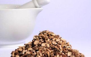 Настойка аира на водке – рецепт и применение в медицине