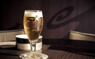 Как выбрать пиво в магазине и в баре на разлив – советы