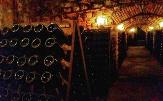 Игристое вино Franciacort (Франчакорта): понятие и особенности употребления