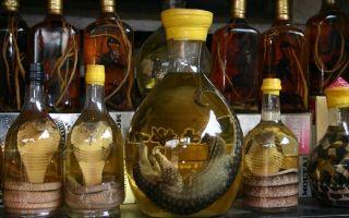 Водка со змеей (змеиное вино): особенности китайской и вьетнамской настойки