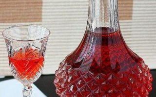 Домашние рецепты вишни (черешни) в вине: тонкости приготовления ароматного продукта