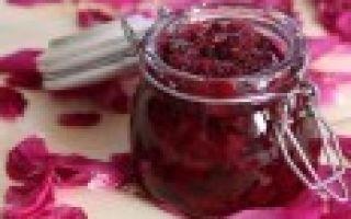 Рецепт домашнего вина из персиков с подробным описанием