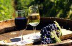 Зачем разбавляют отбродившее вино водой или соком и как правильно это делать?