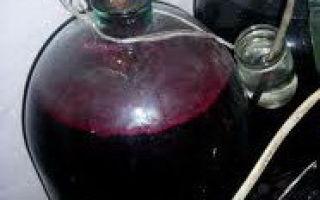 Что такое закваска для вина и как ее правильно готовить в домашних условиях?