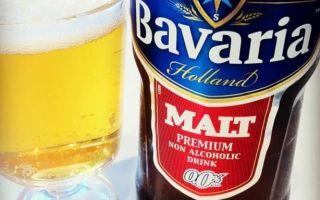 Пиво бавария (bavaria): описание, история и виды марки