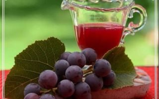 Виноградное вино в домашних условиях – классический рецепт