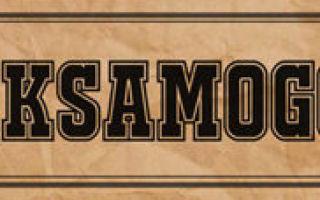 Пиво хмелефф: описание, история и виды марки