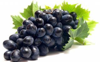 Энотерапия (лечение вином) – суть и преимущества метода