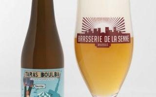 Французское пиво: особенности, регионы и местные пивные стили