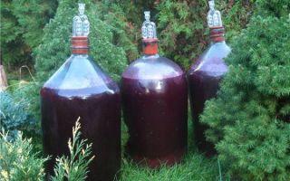 Универсальная закваска для вина: рецепты из ягод и изюма