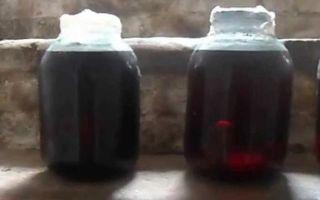 Настойка из черники на водке, самогоне и спирте