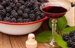 Вино из ежевики в домашних условиях — рецепт и технология