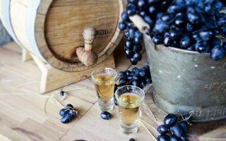 Коньяк из винограда в домашних условиях — рецепт и технология