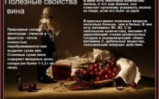 Готовим вино из листьев винограда или вишни: свойства готового напитка и лучший рецепт