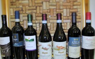 Вино Barbera (Барбера) — эталон итальянской культуры виноделия и традиций