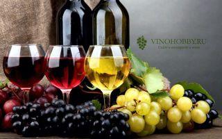 Как приготовить второе вино из жмыха (мезги) винограда или яблок своими руками?