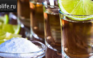 Как сделать домашнюю текилу из водки (самогона) и алое