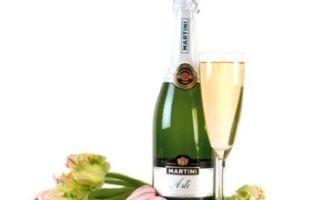 Шампанское Мартини (Мartini): описание, история и виды марки