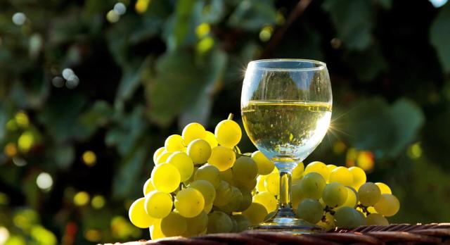 Как правильно выбирать бокалы для вина