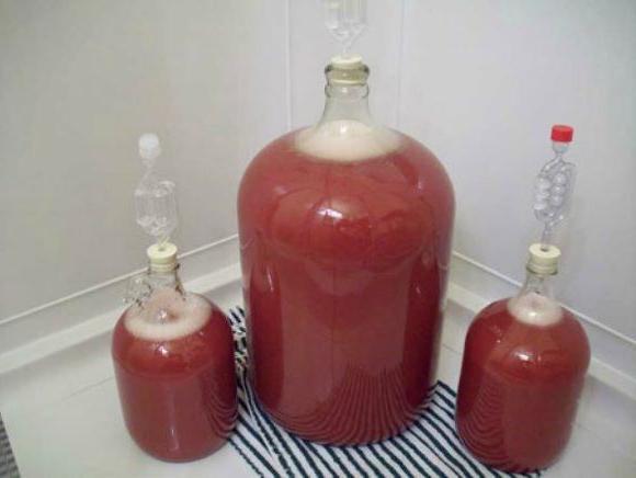 Делаем вино из изюма в домашних условиях - правильный рецепт