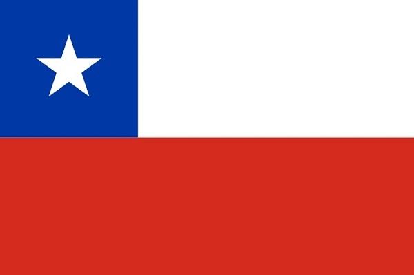 Чилийские вина: особенности, классификация, популярные сорта