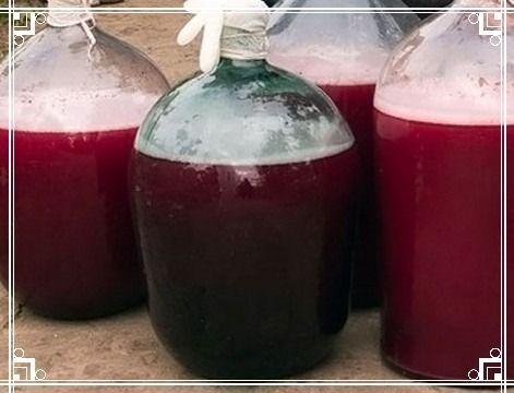 Виноградное вино в домашних условиях – универсальный рецепт