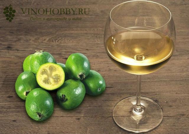 Вино из фейхоа в домашних условиях – правильный рецепт