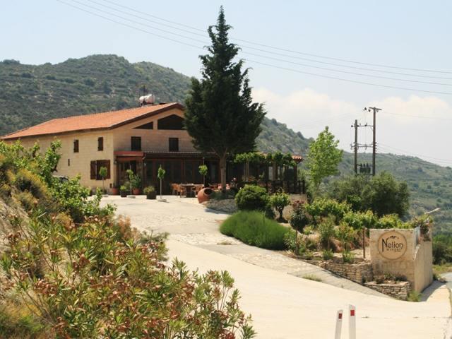 Вина Кипра: особенности, виды и сорта, регионы, лучшие марки