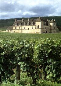 Бургундские вина: особенности, история, классификация, марки