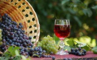 Что делать при появлении плесени на вине