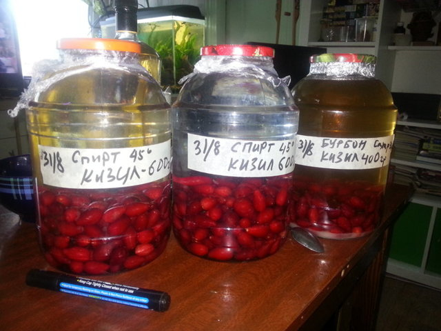 Домашнее вино из кизила – рецепт и технология приготовления