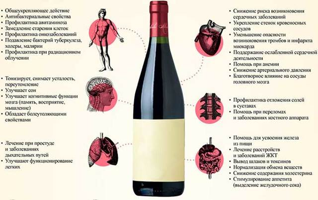 Вино повышает или понижает давление: о влиянии на сердце