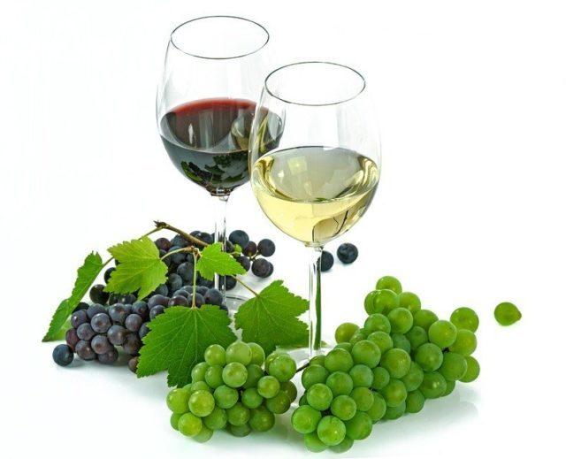 Вино Барбера: особенности, история, виды и культура пития
