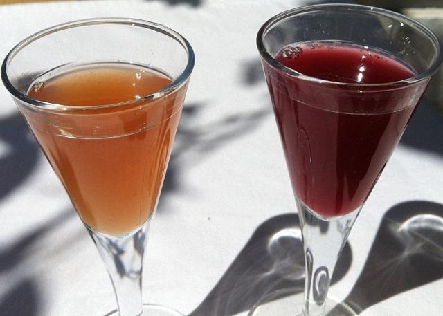 Вино из сухофруктов в домашних условиях – рецепт и технология