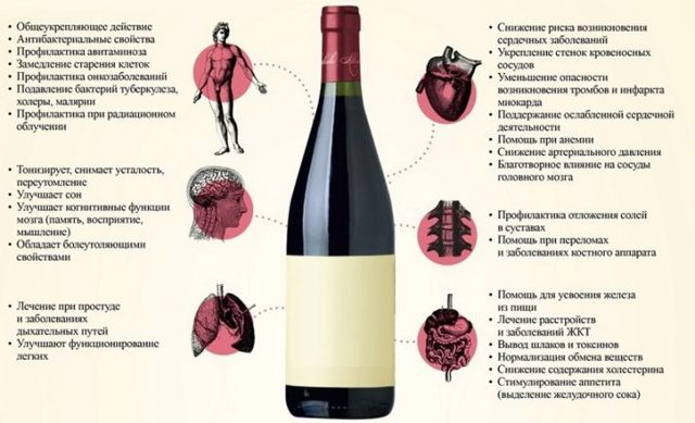 Универсальная закваска для вина – рецепты из ягод и изюма