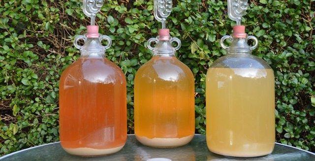 Спиртовая брага – рецепт и пропорции воды, сахара, дрожжей