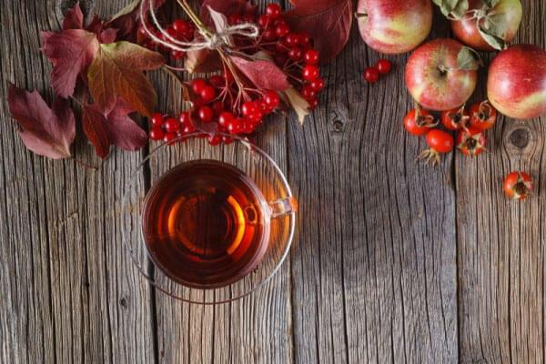 Водка на калине – рецепт настойки в домашних усовиях
