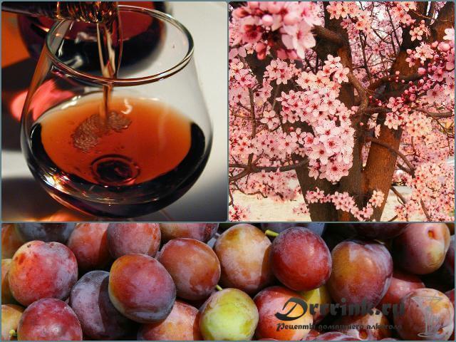 Алкогольная настойка на черносливе (из водки, самогона или спирта)