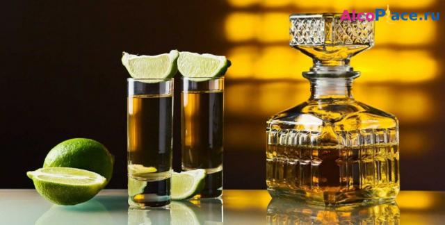 Чем запивать и разбавлять текилу – соки, кола, пиво