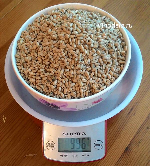 Стоит ли вливать «хвосты» в новую порцию зерновой браги