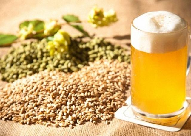 Можно ли сделать пиво из ферментированного солода