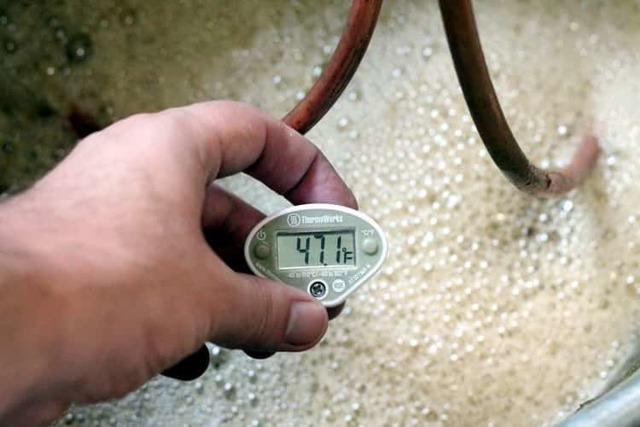 Зерновая брага долго бродит (дольше 45 дней)