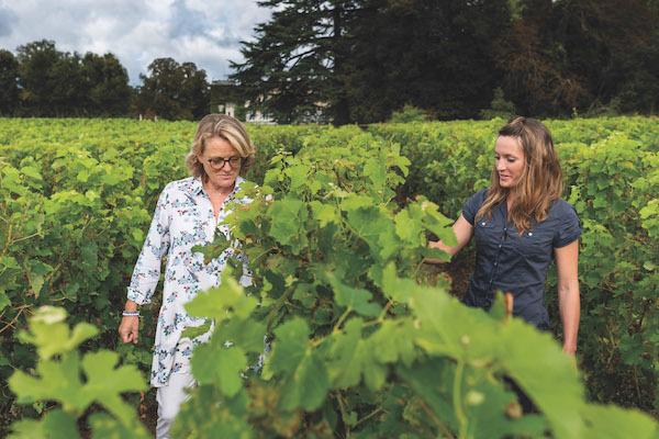 Шампанское Буржуа: описание, история и виды марки