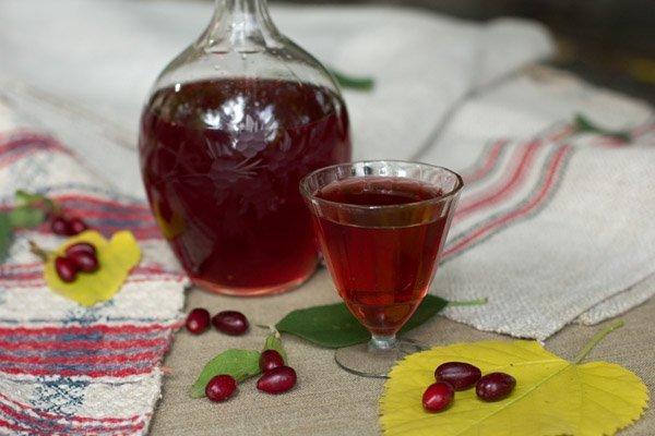 Настойка на базилике водки (спирта или самогона) – рецепт